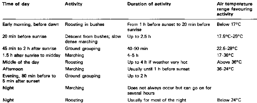 time-of-day-activity-chart